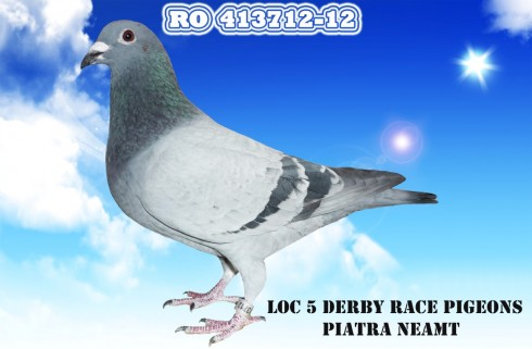 ro-413712-12-medium